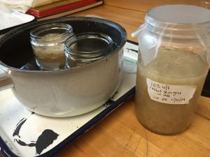 1. Heating rabbit skin glue